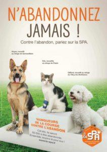 Affiche encourageante de la SPA qui ne cessera de lutter contre l'abandon Source : https://positivr.fr/abandon-animaux-chats-chiens-ete-vacances-spa/