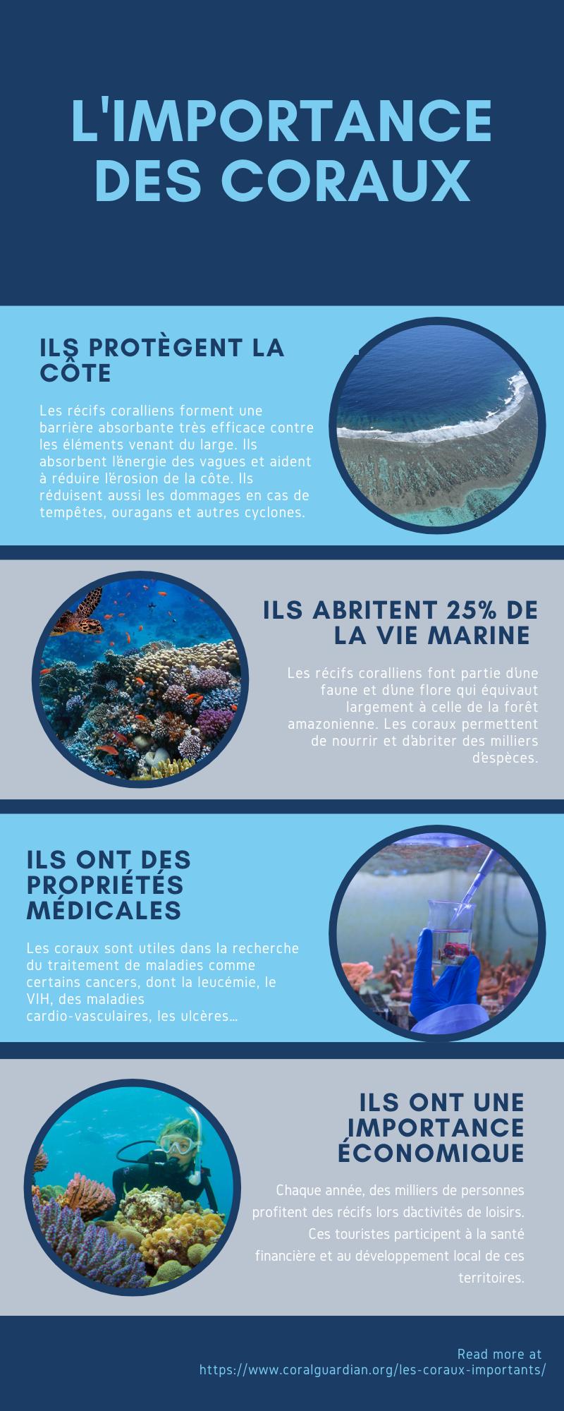 L'importance des coraux